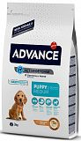 Advance Baby Protect Medium