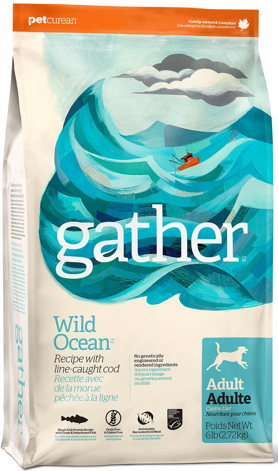 GATHER Wild Ocean Fish DF
