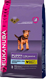 Eukanuba Puppy&Junior Large breed