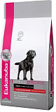 Eukanuba Dog Adult Labrador Retriever