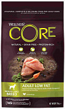 Wellness Core Low Fat