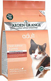 Arden Grange Adult Cat Fresh Salmon & Potato (Grain Free)